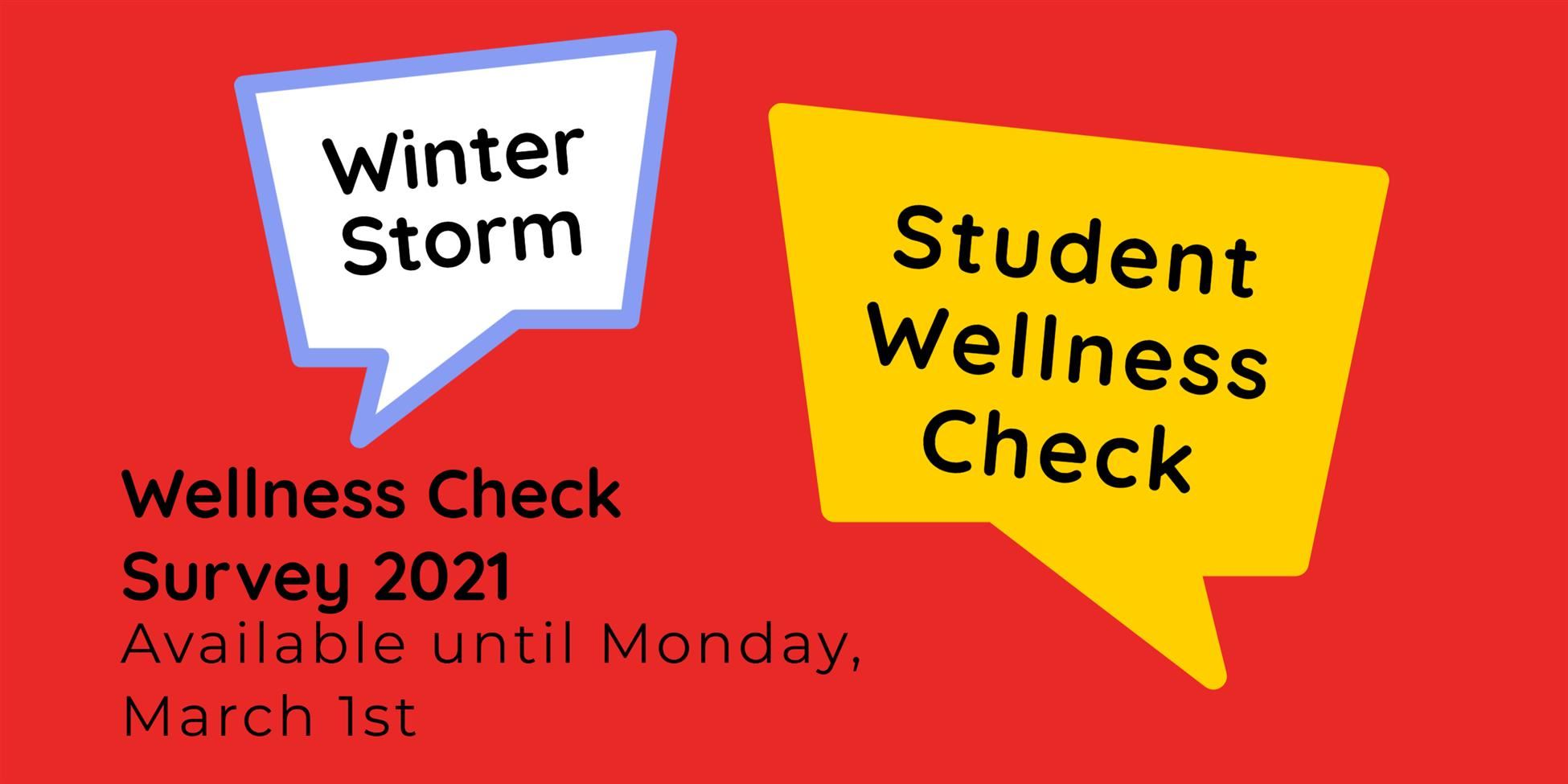 Student Wellness Survey