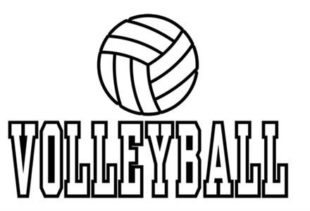 Volleyball Try Out Information