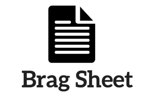 Image result for senior brag sheet