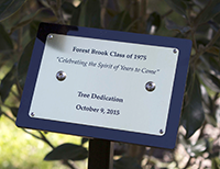 Forest Brook Alumni 1975 Tree Planting Event