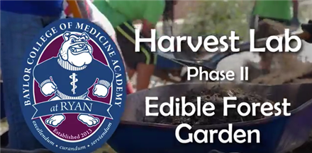 BCMAR Harvest Lab: Edible Forest