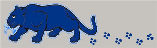 Anderson Panther logo